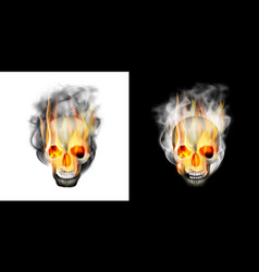 Human skull in the smoke fire vector