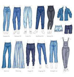 leggings fit style jeans female denim pants vector image