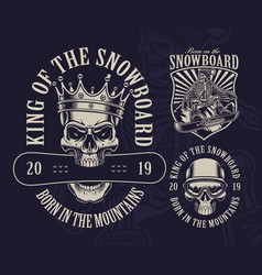 snowboard theme with skulls vector image