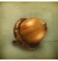 Acorn old style vector image