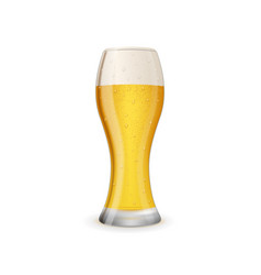 glass of cold and tasty beer vector image