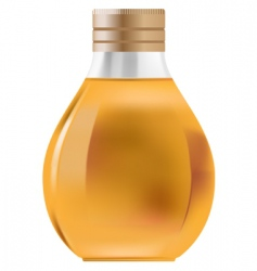 little bottle vector image