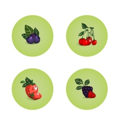 Blackberry Cherry Strawberry Bilberry Icons vector