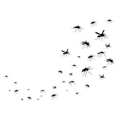 flying mosquitoes black silhouette isolated vector image