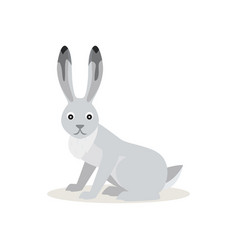 icon white snowshoe hare isolated forest vector image
