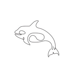 one single line drawing big cute orca vector image