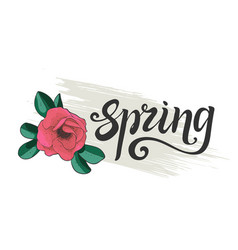 spring lettering branch of blossoming dogrose vector image