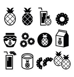 Pineapple fruit pineapple slices juice icons vector image vector image