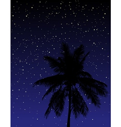 under the stars vector image vector image