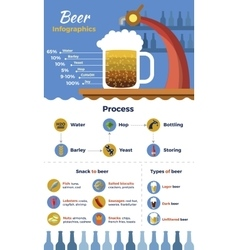 Beer flat infographic vector