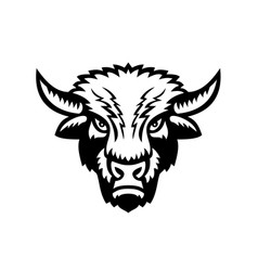 bison or american buffalo head front view sports vector image