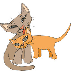 funny cats couple eps 10 vector image