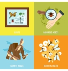Insects Flat Set vector