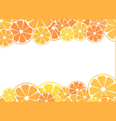 sliced halves of citrus vector image