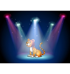 A tiger sitting on the stage with spotlights vector image