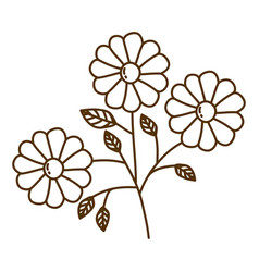 brown silhouette with set of daisy flowers with vector image