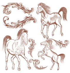Collection of hand drawn horses and flourishes vector