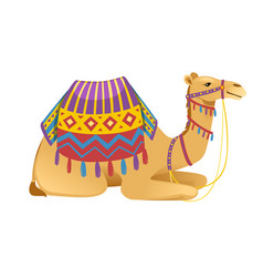 Cute two hump camel with bridle and saddle vector