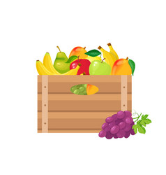 Fruits in wooden crates vector