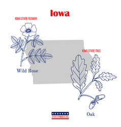 iowa set usa official state symbols vector image