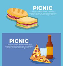 Picnic infographic design vector