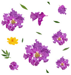 seamless pattern crape myrtle and cosmos vector image