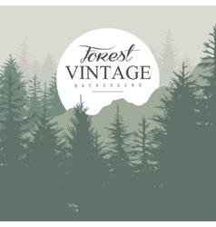 Vintage Pine Forest vector