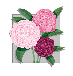 Watercolor lettering bouquet of peony flowers vector