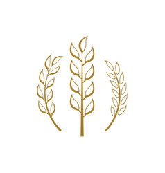 wheat icon design template isolated vector image