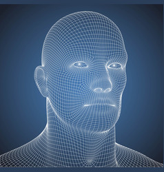 wire frame blue print human head vector image