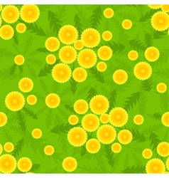 yellow dandelion seamless pattern vector image