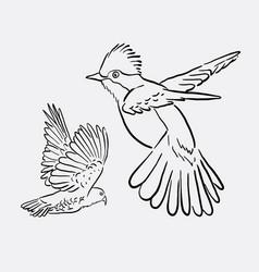 bird animal flying drawing style vector image