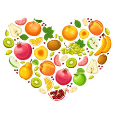 colorful natural fruits concept vector image vector image