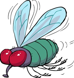 green fly vector image vector image