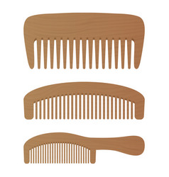 comb barber comb hair accessories wooden comb vector image