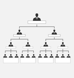 corporate organization hierarchy vector image