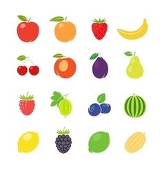 fruits retro vector image