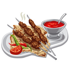 Grilled kebab with pita vector