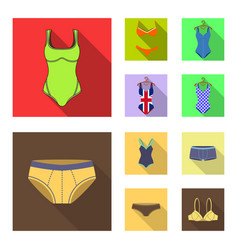 isolated object of bikini and fashion icon vector image