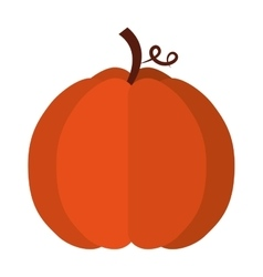 pumpkin fruit isolated icon vector image