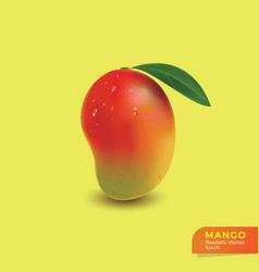 realistic mango fresh mandarin vector image