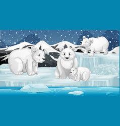 scene with polar bears o n ice vector image