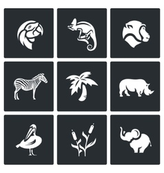 Set of Africa Animals Icons Parrot vector image