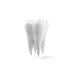 tooth 3d realistic dental vector image