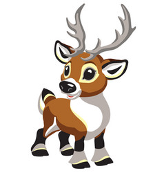Cartoon little reindeer vector