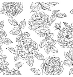 doodle rose seamless vector image