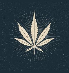 leaf marijuana light silhouette on dark vector image