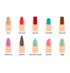Nail shape icons vector image