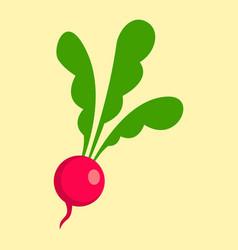 radish icon flat style vector image