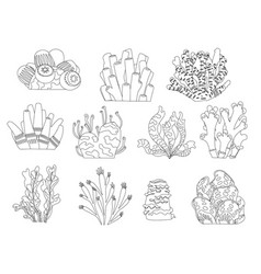 set cartoon underwater plants and creatures vector image